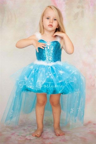 Frozen Elsa Long Tail Outfit
