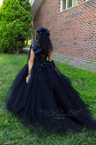 Black Swan Princess Dress